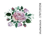 bouquet with pink roses on...   Shutterstock . vector #1787159258