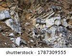 Gray And Brown Limestone Rock....