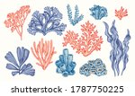 corals and seaweed. vector hand ... | Shutterstock .eps vector #1787750225