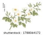 sketch floral decorative set....   Shutterstock .eps vector #1788064172