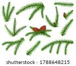 fir branch. christmas tree ... | Shutterstock .eps vector #1788648215
