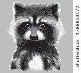cute  hand drawing raccoon... | Shutterstock .eps vector #1788853172