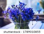 Bouquet Of Cornflowers In A...