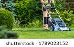 Professional Caucasian Gardener ...