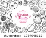 Berries And Fruits Drawing...