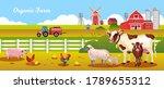 Organic Farm Vector...