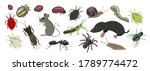 A Set Of Animal Pests Of Fields ...