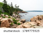Rugged Granite Rocks And Lush...