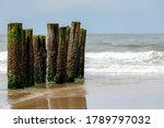 Wooden Wave Breaker Poles In...