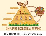 Science Simplified Ecological...