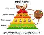 science simplified ecological... | Shutterstock .eps vector #1789843175