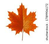autumn leave or orange leaf... | Shutterstock .eps vector #1789906172