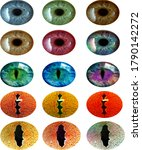 multicolored pupils on a white... | Shutterstock . vector #1790142272