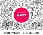 berries drawing collection.... | Shutterstock .eps vector #1790338685