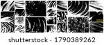 soap grunge backgrounds... | Shutterstock .eps vector #1790389262