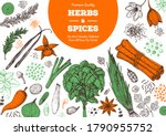 herbs and spices hand drawn... | Shutterstock .eps vector #1790955752