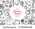 berries and fruits drawing... | Shutterstock .eps vector #1790964338