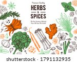 herbs and spices hand drawn... | Shutterstock .eps vector #1791132935