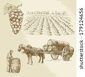 Vineyard  Harvest  Farm   Hand...