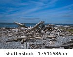 Washed Up Logs And Debris On A...
