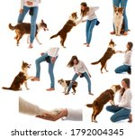 collection   girl and her dog   ...   Shutterstock . vector #1792004345
