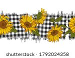 Bright Sunflowers On A...