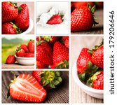 photo collage of fresh... | Shutterstock . vector #179206646