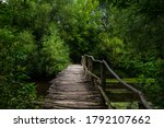 Old Wooden Bridge Over The...