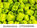 Fresh Green Bell Peppers In...