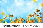 orange fall  leaves and rain ...   Shutterstock . vector #1793249968