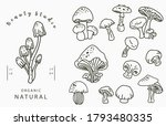 mushroon collection logo with... | Shutterstock .eps vector #1793480335