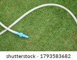Hosepipe On Grass In Garden ...