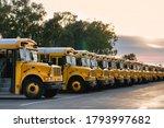 Row of school buses in parking...