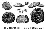 truffles mushrooms set.... | Shutterstock .eps vector #1794152722