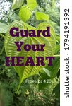 Small photo of Bible words about guard your heart from proverbs 4:23 with love shape green leaf and water drops on nature background