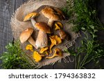 Wild Mushrooms And Chanterelle...