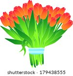 bouquet of tulips | Shutterstock .eps vector #179438555