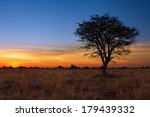 Lovely Sunset In Kalahari With...
