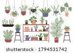 Great Amount Variety Plants In...