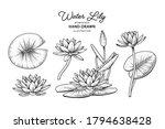 sketch floral decorative set....   Shutterstock .eps vector #1794638428