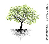 trees isolated on white...   Shutterstock .eps vector #1794794878
