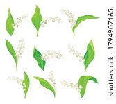 lily of the valley with pendent ... | Shutterstock .eps vector #1794907165