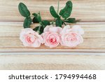 pink rose  on wood background. | Shutterstock . vector #1794994468