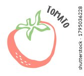 tomato drawing hand painted... | Shutterstock .eps vector #1795036228