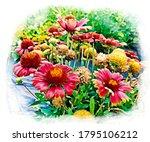 Indian Blanket Flower Or...