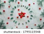 Poinsettia Flower And Xmas...