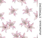 Pink Lily Flowers Isolated On...