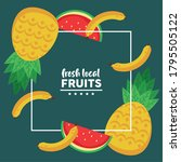 fresh local fruits with...   Shutterstock .eps vector #1795505122