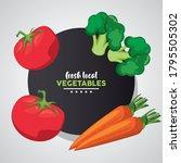 fresh local vegetables...   Shutterstock .eps vector #1795505302