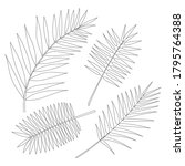set of palm leaves isolated on... | Shutterstock .eps vector #1795764388